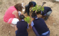 Tree Planting at Rietvlei 1